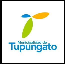Tupungato
